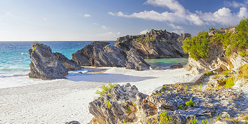 Horseshoe Bay in Bermuda, a beach of white sand, blue water, and large rocks with green plants.